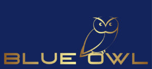 Blue Owl Film Productions